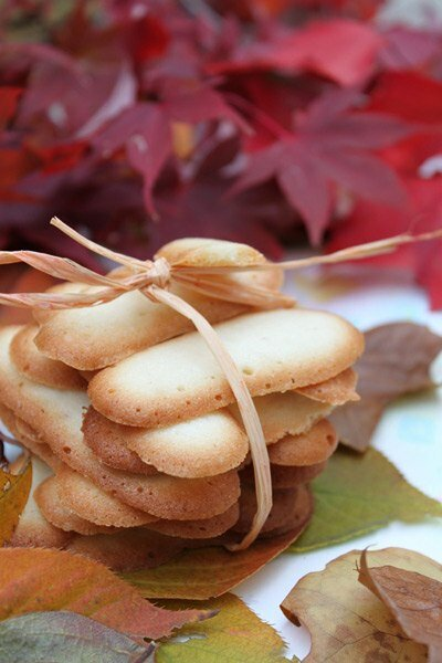 Cat Tongue Cookie Recipe (Bánh Lưỡi Mèo)